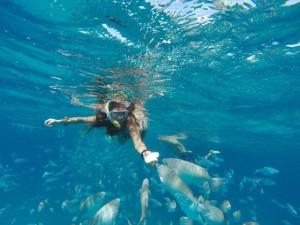 Canary Islands Yacht Charter Holiday Flotilla
